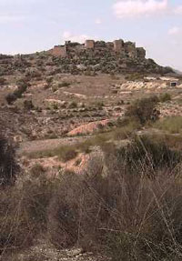Foto desde la lejanía del Castillo del Río